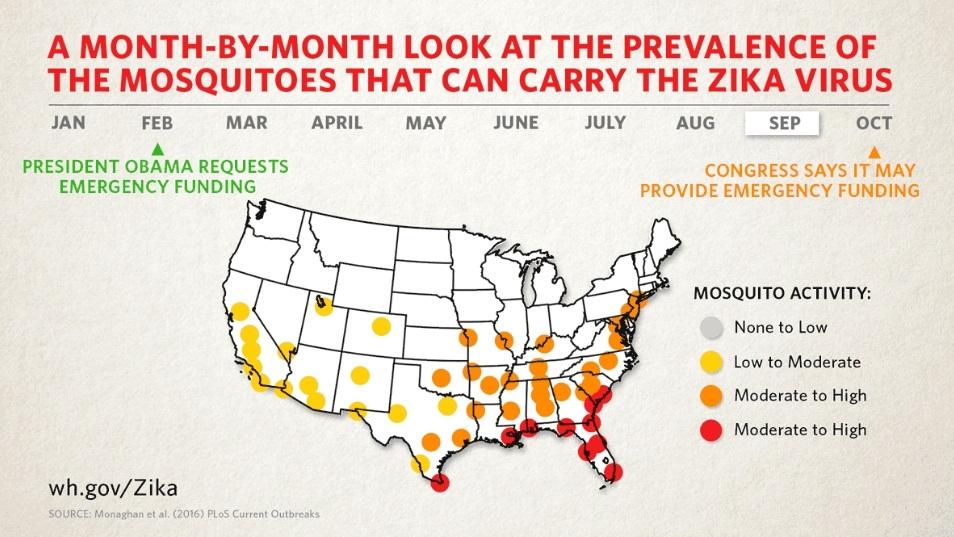 寨卡病毒正如建模者所预料的那样在美国分布